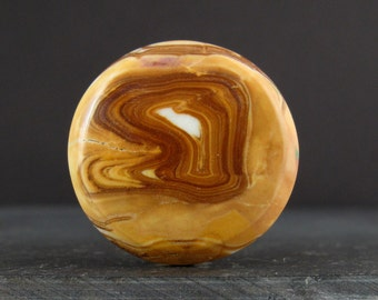 Unique Petrified wood cabochon S6918