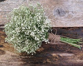 Simple Dried Baby's Breath Bouquet - Small Wedding Bouquet, Decor Bouquet, Flower Girl Bouquet, Small Bridesmaid - Baby's Breath