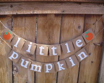 Little Pumpkin Banner - Baby Shower Banner, First Birthday Banner, Photo Prop, Little Pumpkin Party