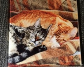 "Glass Tile or Coaster  - Best Friends  4.25"" x 4.25"""