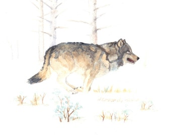 Set of four  5 x 7 Woves Running in Yellowstone Watercolor Reproduction Note Cards