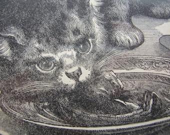Antique Cat Illustration - Antique  Print - Black and White Print - Antique Ephemera - Vintage Ephemera