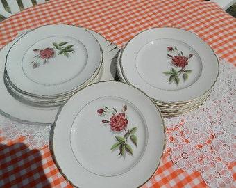 13 dessert plates + 1 large plate Moulin des loups France