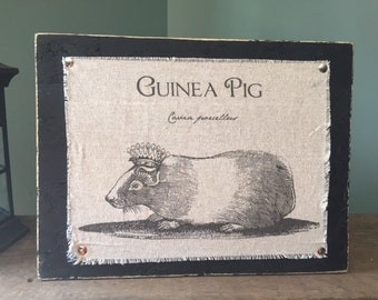 Distressed Wooden Plaque with Fabric Guinea pig Queen Sign