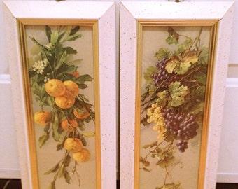 Vintage Botanical Prints Wall Decor, fruit wall hangings, framed under glass, cottage chic prints, vintage decor
