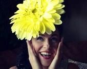 Giant, Yellow Daisy, headdress, Flower, DERBY, hat, Fascinator, headpiece, Huge, Flower,Feminine,