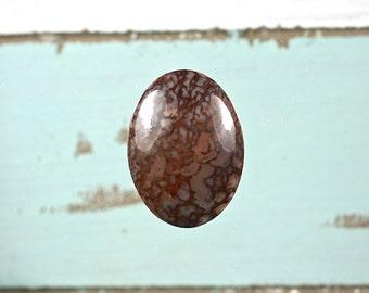 Dinosaur bone gemstone oval 30x22mm cabochon