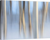 Snowy Trees Canvas Gallery Wrap Winter Photo Abstract Birch Trees Snow Maine White Ivory Beige Blue Soft Muted Relaxing Wall Art Home Decor