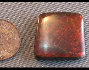 Ammolite cabochon 21 mm x 22 mm x 5.5 mm a 6 grams