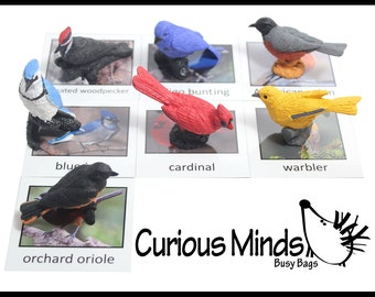 Montessori Bird Animal Match Game - Miniature Animals with Matching Cards for Kids