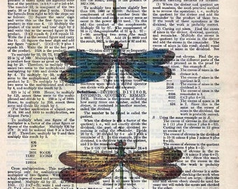 Vintage Illustration Printed on Antique Encyclopedia Page  - Colorful Dragonflies