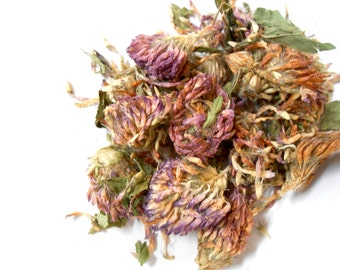 Organic RED CLOVER BLOSSOMS and Petals - Lovely in Tea, Potpourri, and Incense