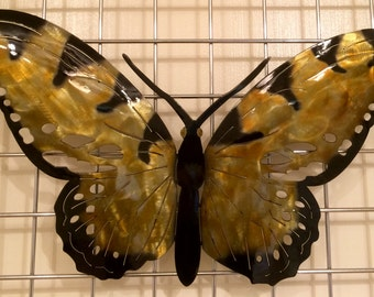 Butterfly D5