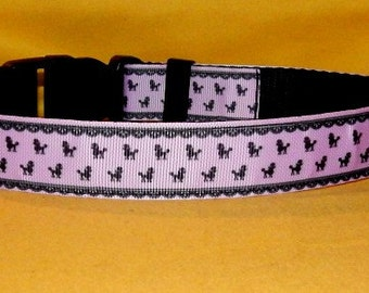 Little poodles dog collar