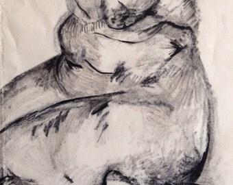 chubby body on canvas
