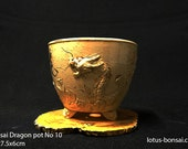 Bonsai  Dragon pot No 010, sculpture 03/2016