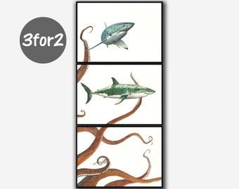 Druck Große Weiße Hai U0026 Octopus   Fisch Kunst Wand Dekor Aquarell Malerei  Kunst Wand