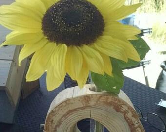 Wood w/ Test tube flower vase