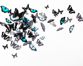 screen print - limited edition - hand printed butterflies - turquoise and black wall art - 50 x 70cm poster