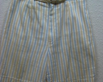 Vintage 1960s Blue Yellow Mod Dress Barbecue Shorts