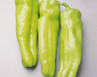 Pepper long yellow jumbo seeds ,435,  sweet pepper seeds, gardening, vegetable seeds , peppers collection