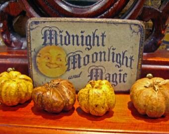 Midnight Moonlight Halloween Miniature Wooden Plaque 1:12 scale