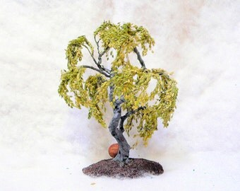 Weeping Tree for a Japanese garden scene