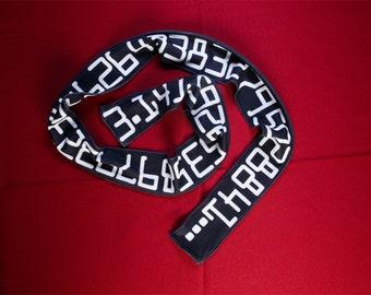 Pi microfleece scarf