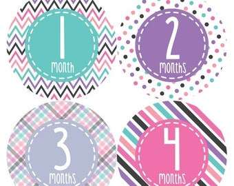 Monthly Baby Stickers Baby Month Stickers Baby Girl Month Stickers Monthly Photo Stickers Monthly Milestone Stickers 363