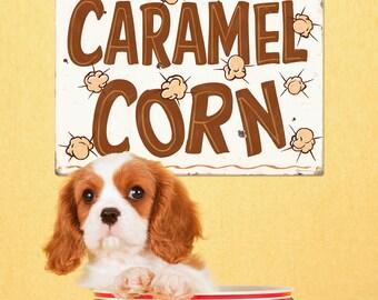 Caramel Corn State Fair Food Metal Sign - #59292