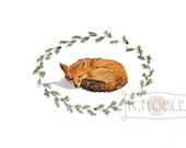 Sleeping Fox Watercolor Print
