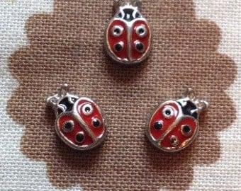 Ladybug floating locket charm