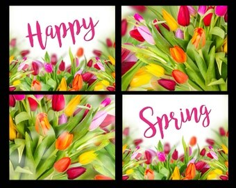 Happy Spring Tulip 8x10 Printable Combo, Prints, Tulips, Springtime