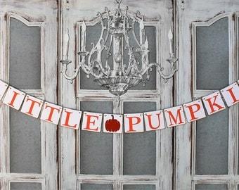 Twins Baby Shower Decorations - Fall PUMPKIN Decor BABY SHOWER Banner - Autumn rustic baby shower decorations