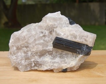 Black Tourmaline in Quartz Crystal Specimen