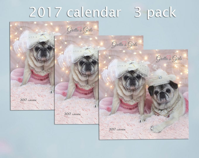 PACK of 3 - 2017 Wall CALENDAR
