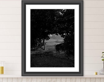 Wall Art, Nature Art,Country Scene, Black and White Photography, Downloadable Art, Printable Art