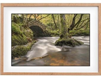 Autumn river print, Hisley bridge on dartmoor, River and bridge, Dartmoor river, river at fall, fall woodland