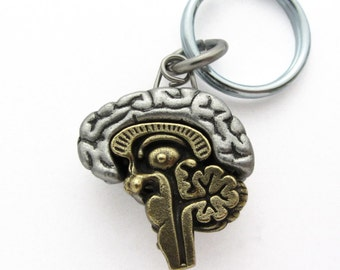 Articulating Human Brain Anatomy Neurology Neurobiology Keychain