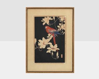 original parrot and magnolia woodblock print, japanese woodblock print, vintage woodblock print, woodblock print,