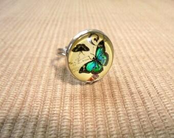 Finger ring (1457)