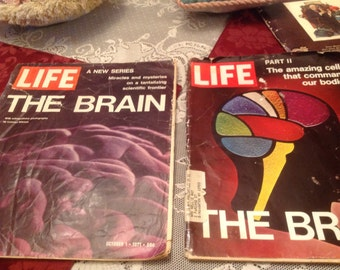 Life Magazine/The Brain 2 Magazine Set, October 1 and 22,1971