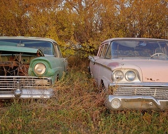Vintage Ford car photography, Hornet and Pink lady