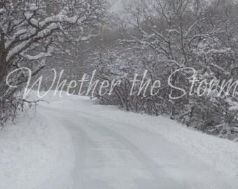 Snowflakes Falling all Around - Fine art print Home decor