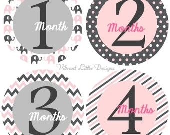 Baby Monthly Stickers Girl, Milestone Stickers, Month Stickers, Baby Month Stickers, Baby Stickers Elephant #51P