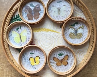 Vintage Bamboo Butterfly Tray & Coasters