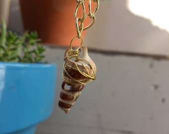 Ocean Distressed Mini Conch Shell Pendant