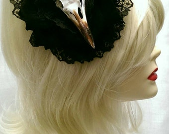Black  rose  crow taxidermy  fascinator with  lace