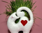 Plushies Toys Cat lover-Heart plush-gift Stuffed Animals-toy Cat-soft toy-Handmade toy-Souvenir-spring