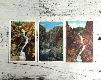 Vintage National Park Post Cards, Colorado Vintage Post Cards, Mid Century, 1940s